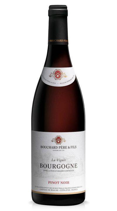 Bouchard & Fils Pinot Noir
